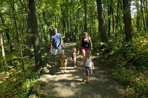 Photo of visitors traveling along the wooded Hidden Falls Trail.