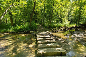 Photo of special stepping stones for hikers crossing Prairie Creek.