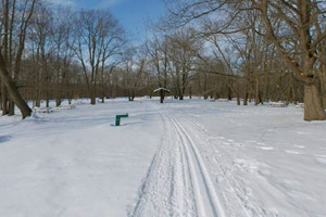 Photo of a groomed ski trail in wintertime.