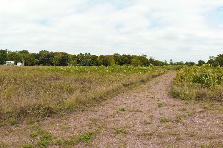 """Photo of the trail called the """"Lower Sioux Agency Traders Trail.'"""