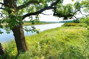 Photo of the landscape on the shores of the Vermillion River.