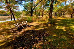 Photo of a bench at the edge of William O'Brien State Park's beaver lodge trail.