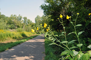 Photos taken on the Goodhue Pioneer State Trail