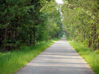 Photo of the paved Paul Bunyan trail in summer.