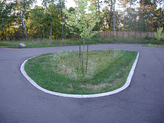 Parking lot island rain garden with mowed filter strip and ribbon curb.