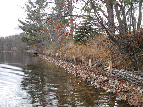 Riprap shore enhanced with brushbundles and live willow stakes.