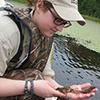 Examining an aquatic plant