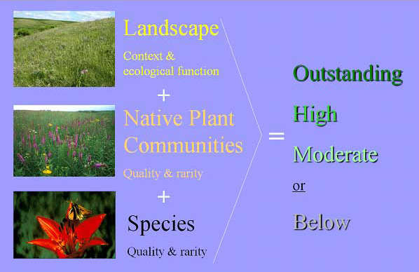 four biodiversity significance ranks for landscapes, native plant communities and species from outstanding to high to moderate to below