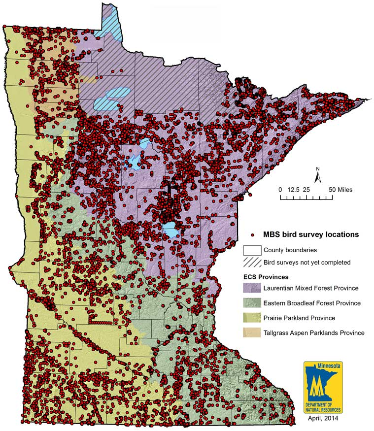 map of Minnesota showing locations throughout the state where breeding bird species observations have been entered into the observation database