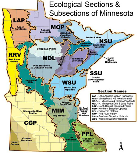 Map of ecological sections and subsections of Minnesota.