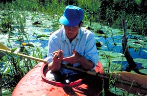 Botanist Karen Myhre
