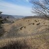 Mound prairie