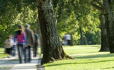 family walking along neighborhood