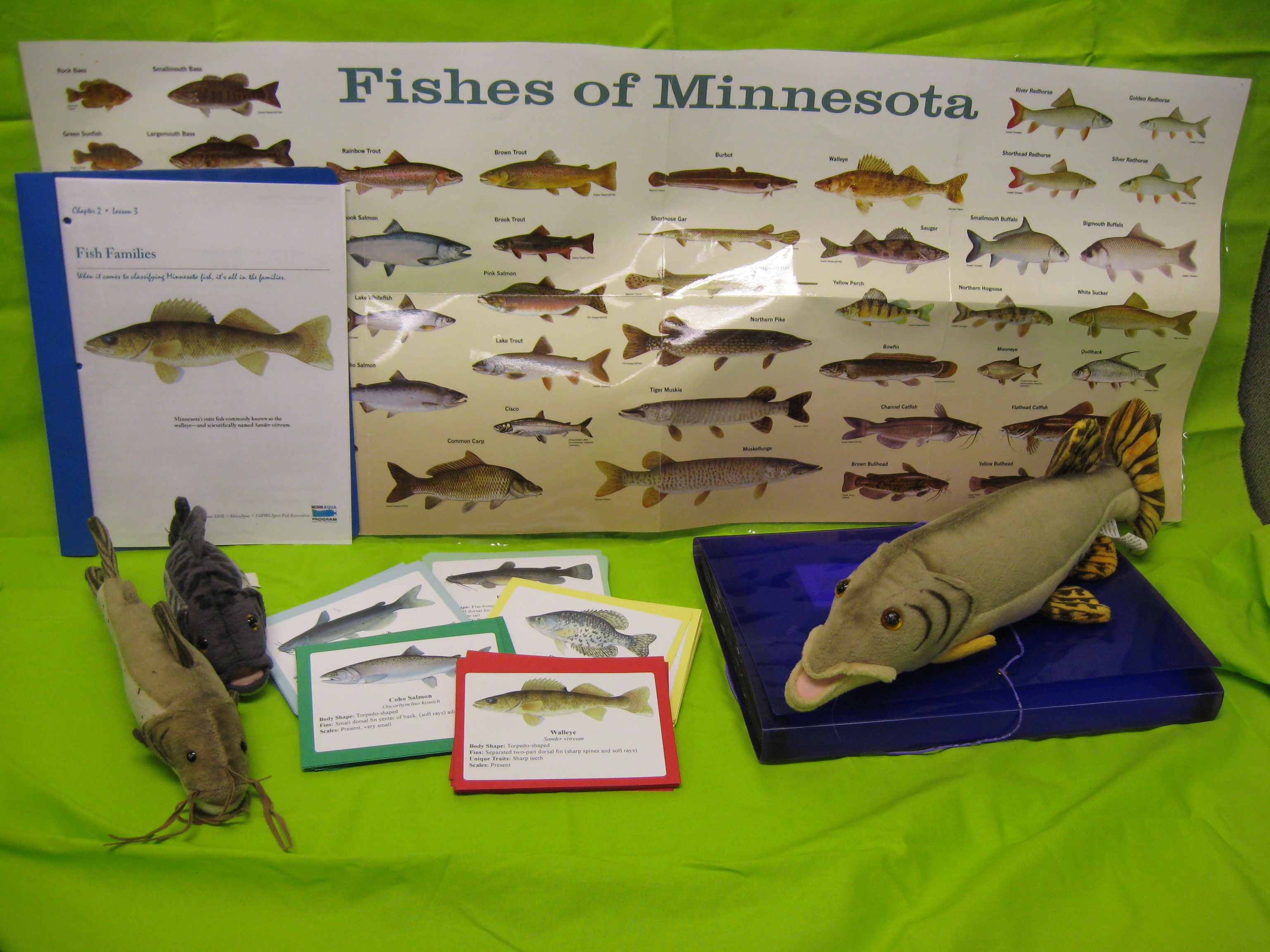 Materials for Fish Families