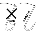 Barbless Hook