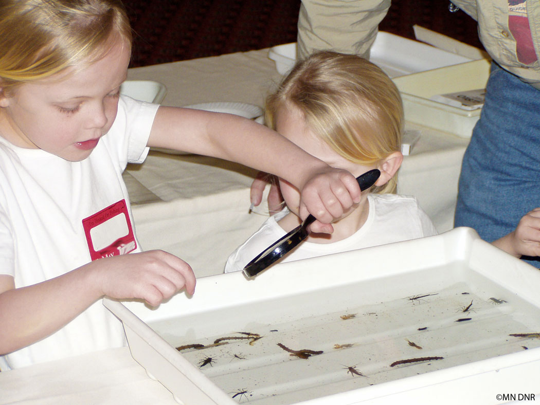 Youth obsserving macroinvertebrates