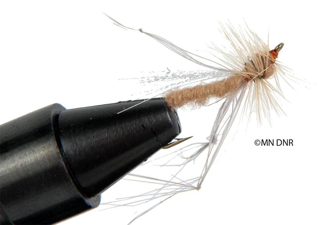 Cranefly Dry Fly