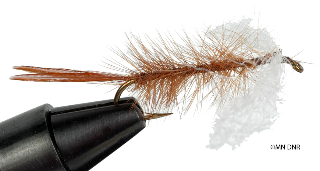 Dragonfly Dry Fly
