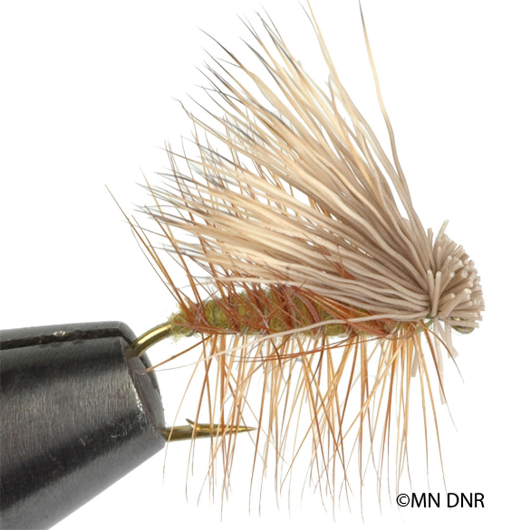 Elk Caddis Dry Fly