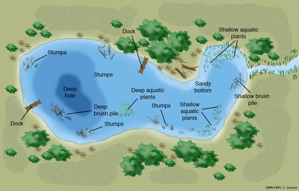 Lake Habitat Labeled