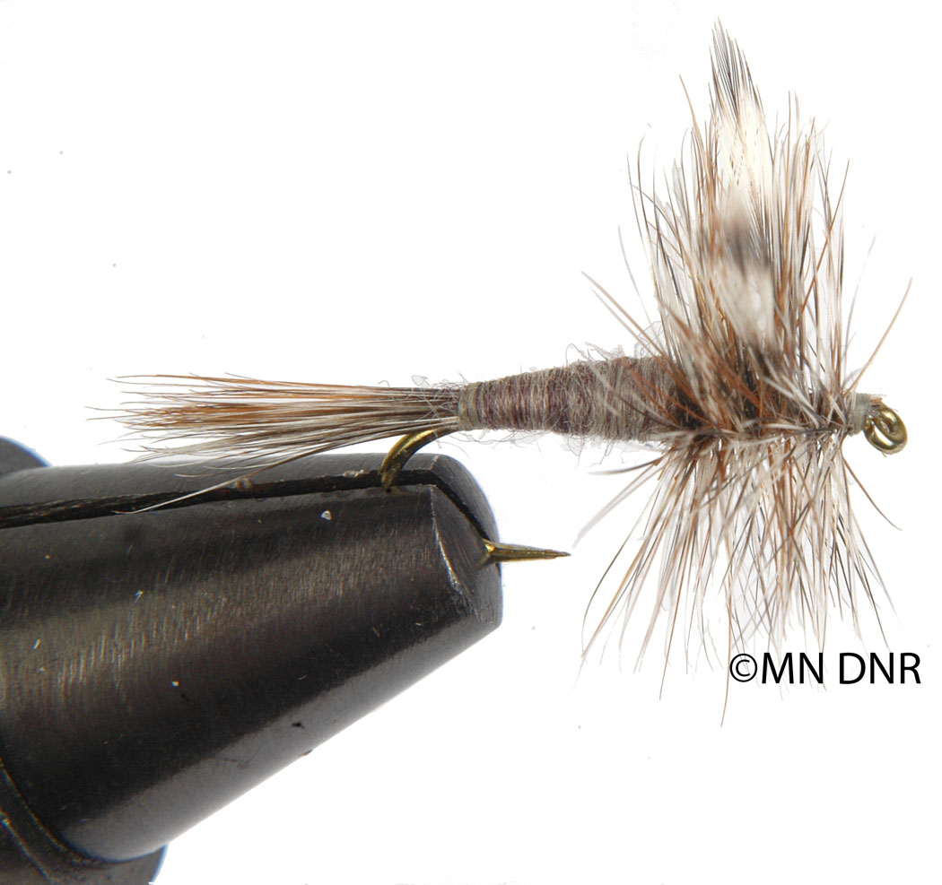 Mayfly Dry Fly