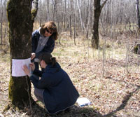 Photo of Teacher doing a tree rubbing