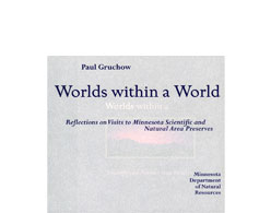 Worlds within a World Book