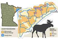 Map of moose mortality project area