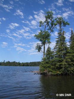 Bearhead Lake