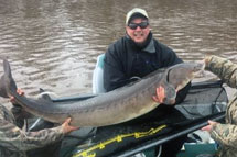 Current catch-and-release record lake sturgeon.