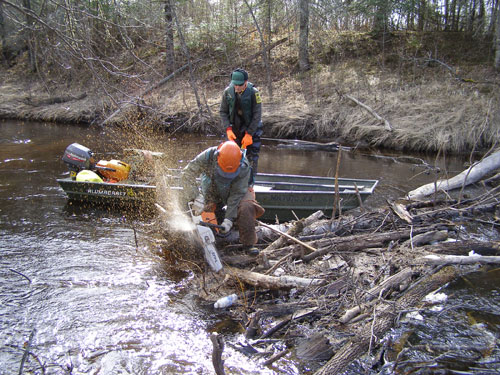 Clearing the Rat Root River.