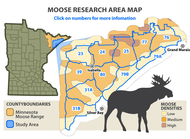 Map of moose densities in Lake and Cook counties of Minnesota