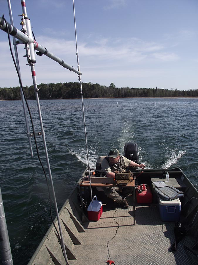 Park Rapids Area Fisheries staff tracking muskellunge implanted with radio transmitters to understand the extent of natural reproduction and identify natural spawning habitats in Big Mantrap Lake.