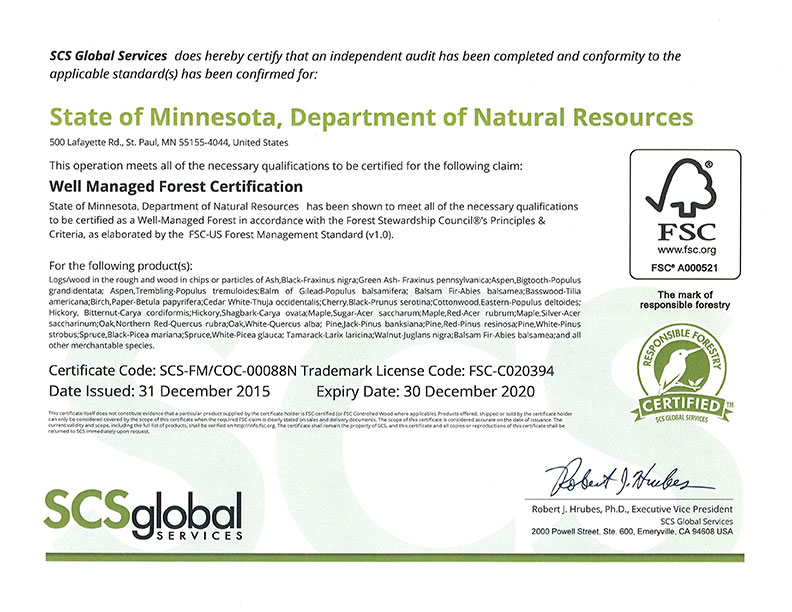 image of the fsi certificate