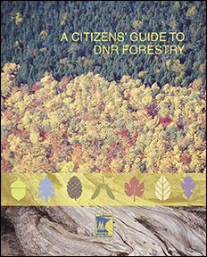Cover image for the Citizen's Guide to Forestry.