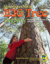 Image of Big tree Registry