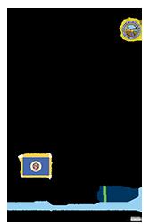 image: Back of Minnesota Symbols poster