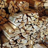 photo: campfire wood in bundles