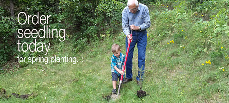 Grandfather and Grandchild planting a tree