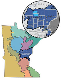 Minnesota map with Chippewa Plains and Pine Moraine-Outwash Plains section shown