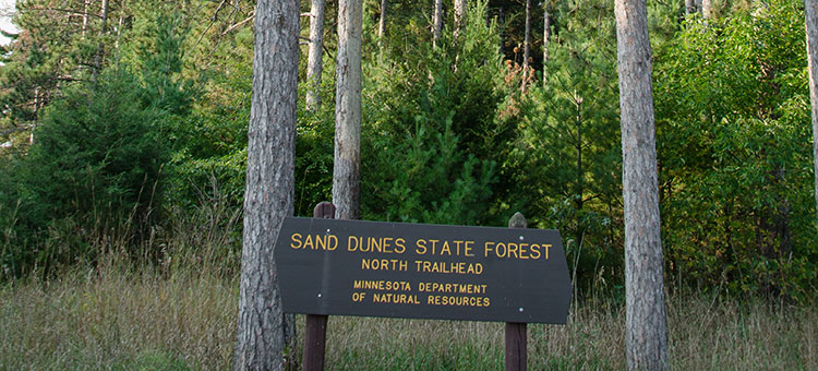 Sand Dunes State Forest Nroth Trailhead sign.