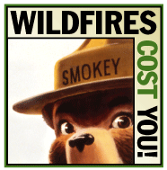 Smokey Bear Logo with word Wildfires Cost you.