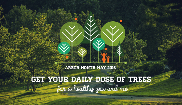 Arbor month - May 