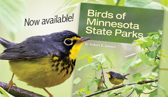 New birding book now available