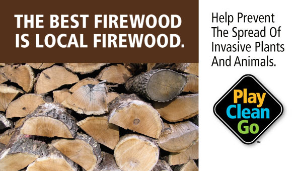Use Local firewood. Play. Clean. Go.