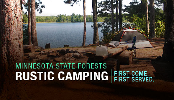 Rustic Camping in Forests