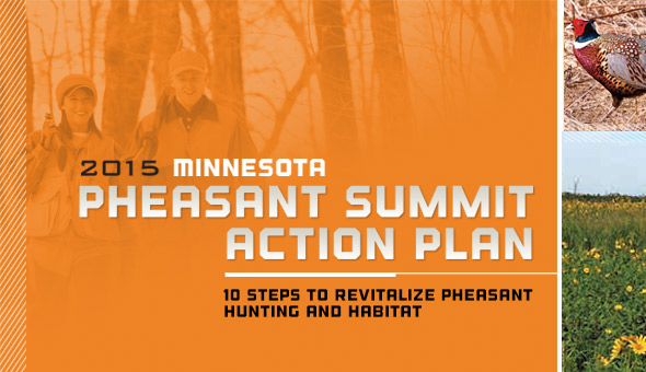 10 steps to revitalize pheasant hunting and habitat