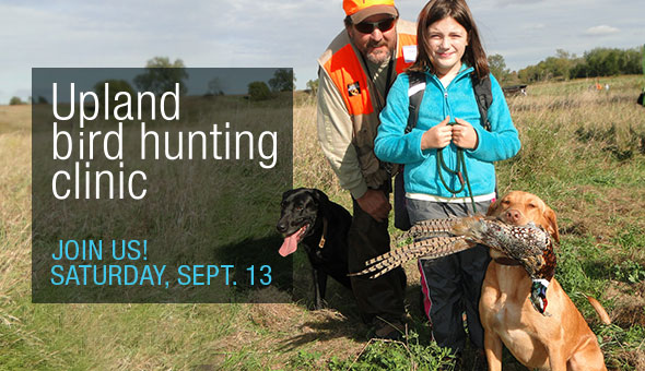 Upland bird hunting clinic