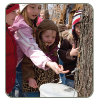 Kids at a free maple syruping event