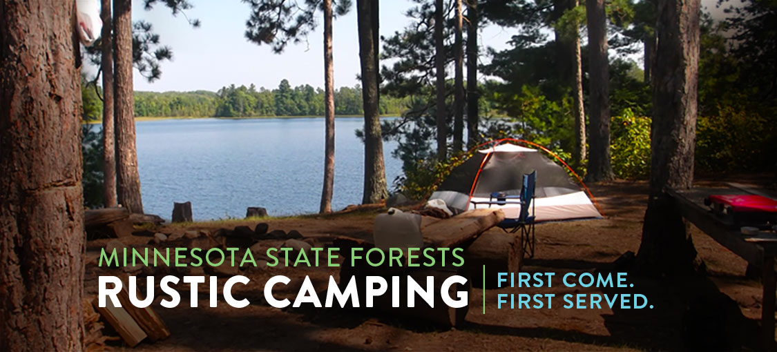 Rustic camping in a State Forest